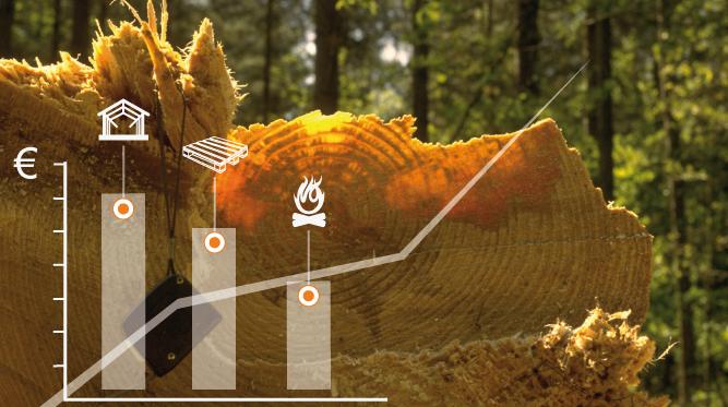 Connaître le prix des bois